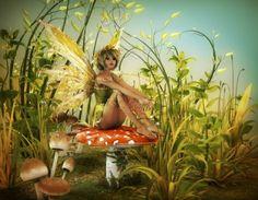 #Fairy #fae #Fatasoprafungo