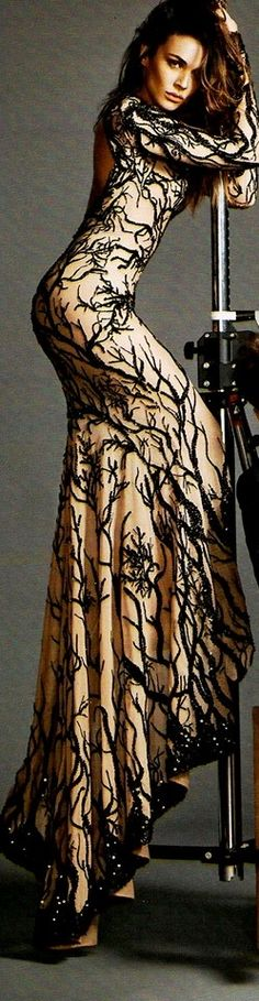 Not crazy about the pole, but the gown is amazing! Zuhair Murad F/W 2013-2014 Couture