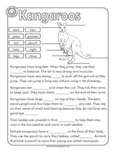 Kangaroo Label and Cloze