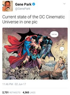 Gal Gadot WW is the only solid character in the DC cinematic universe after they killed Superman. Batman is now a villain in my eyes Lego Dc Comics, Dc Comics Funny, Nananana Batman, Univers Dc, Hulk, Dc Memes, Detective Comics, Bat Family, The Villain