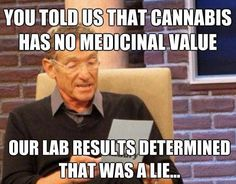 You told us that cannabis has no medicinal value. Our lab result determined that was a lie. Chronic Pain, Fibromyalgia, Marijuana Facts, Marijuana Funny, Weed Humor, Medical Cannabis, Cannabis Oil, Smoking Weed, Natural Medicine