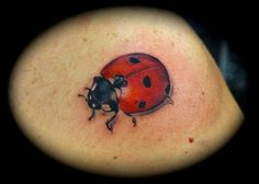 Ladybug Tattoo for Hands Cute Men