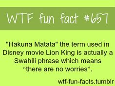 WTF Fun Facts is updated daily with interesting & funny random facts. We post about health, celebs/people, places, animals, history information and much more. New facts all day - every day! Funny Weird Facts, Weird But True, Real Facts, Wtf Fun Facts, Awesome Facts, Random Facts, Interesting Facts, Strange Facts, Fascinating Facts
