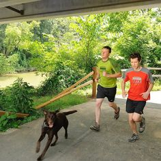 South Chickamauga Greenway is no. 25 of 31 places you helped protect in 2016.  In #Chattanooga we built a bridge and trail connecting the #Tennessee Riverwalk to the #SouthChickamaugaCreekGreenway a big step towards our goal of a 23-mile car-free corridor linking the city proper with outlying neighborhoods and parks.  We're counting down to the New Year with 31 places protected in 2016thanks to Trust for Public Land supporters like you! #thisisconservation #tennessee #tennessee_life  Photo…