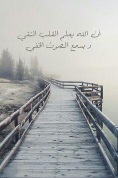 اللهم نق قلوبنا واستجب دعواتنا..سبحانك..♣