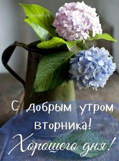 С добрым утром вторника Birthday Greeting Message, Birthday Greetings, Montreal Botanical Garden, Good Morning Flowers, New Pins, Words, Blog, Lunch Bags, Louis Vuitton