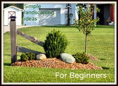 Great, simple ideas for beginning landscapers for landscaping your yard!