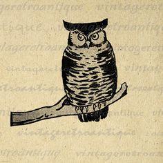 Digital Image Owl Printable Antique Graphic by VintageRetroAntique