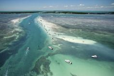 The Best Snorkeling From the Shore in Marathon, Florida