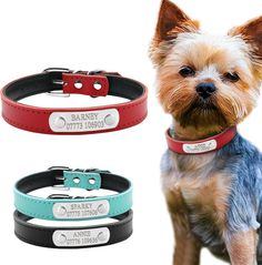 246 Best Pet Products On Aliexpress