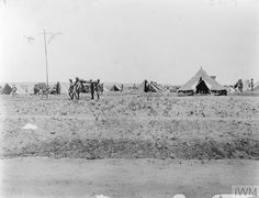 THE BRITISH ARMY IN THE SINAI AND PALESTINE CAMPAIGN, 1915-1918 British Army, Palestine, Soldiers, World War, Campaign, House Styles, Outdoor, Outdoors, Outdoor Games