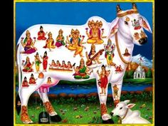 KAMDHENU COW MANTRA FOR FULL FILL DESIRES & PLEASURE | गाय माता मन्त्र Vedic Mantras, Hindu Mantras, Lord Murugan Wallpapers, Gayatri Mantra, Baby Krishna, Devotional Songs, Nike Wallpaper, Tantra, Morning Images
