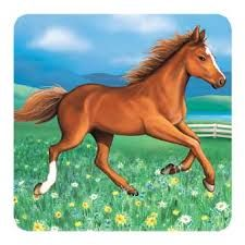 Bildergebnis für pferde bilder