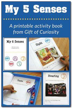 Five senses activities: A printable My 5 Senses activity book plus a link to a five senses sorting activity  Gift of Curiosity