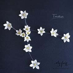taurus constellation | Ely Fair Photography | Juniper Designs - this is beautiful. I wonder what kind of flowers these are. Maui Tattoo, Get A Tattoo, Taurus Constellation Tattoo, Fair Photography, Taurus Tattoos, Delicate Tattoo, Cool Tats, Skin Art, Constellations