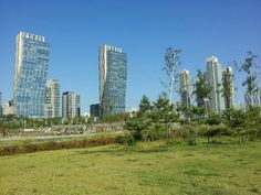 Welcome to Songdo, the city of tomorrow, a metropolis built especially with smart technology in mind. Located in South Korea, this 'city in a box' is a model for sustainable development and impressive innovations.
