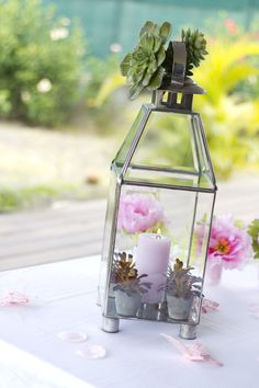 Pink candle and green succulents in a lantern. Pink and Green. Photo Credit : A. Mordant - Click to read full instructions on how to do here: http://www.wedotahiti.com/how-to-decorate-a-winter-themed-table #tahitiweddingplanner #tahitiweddingpackage