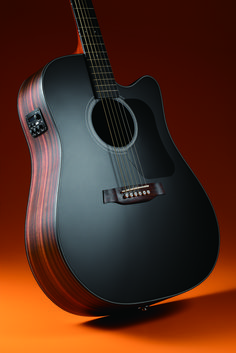 "Walden Limited Edition ""The Black Guard"" D560CEB acoustic-electric guitar #AcousticGuitar"