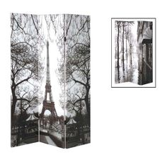 3-Panel Screen / Room Divider - DIY with panels and photo enlargement. Blow up an image: vintage poster art, iconic artwork. anything.