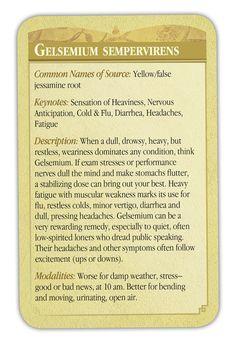 Gelsemium Semp