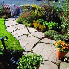 A mix of perennials, shrubs, and small trees provides year-round texture and seasonal color.