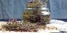 ΦΤΙΑΞΤΕ ΛΑΔΙ ΚΑΝΕΛΑΣ ΚΑΙ ΣΒΗΣΤΕ ΡΥΤΙΔΕΣ ΚΑΙ ΓΡΑΜΜΕΣ ΕΚΦΡΑΣΗΣ !!!!! Kai, Healthy Tips, Home Remedies, Mason Jars, Mason Jar, Home Health Remedies, Natural Home Remedies, Glass Jars, Jars