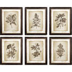 Floral Framed Print | Joss & Main