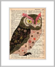 vintage dictionary art print - hawk owl illustration. littlebluebirdstudios.