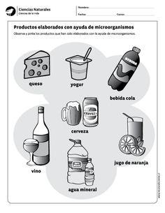 Productos elaborados con ayuda de microorganismos