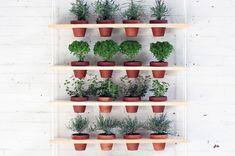 This DIY Hanging Planter is the Perfect Urban Garden via Brit + Co.