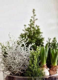 Enkel julepynting / simple Christmas decorations