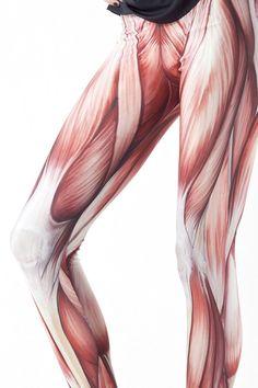 Muscles Leggings | Black Milk Clothing