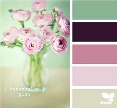 ranunculus pink design seeds hues tones shades  color palette, color inspiration cards