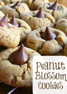 Peanut Blossom Cookies Recipe - Peanut Butter Kiss Cookies  |  whatscookingamerica.net  | #peanut #butter #blossom #kiss #cookies #christmas