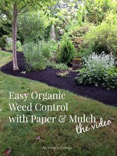 "Easy Organic Weed Control With Paper & Mulch. (I dug out the grass and weeds by the roots, put cardboard down, and then 4"" of mulch. Guess what: the dang stuff still comes up.)"