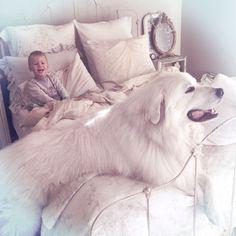 Little boys & Great Pyrenees #companiondog #mypetitemaison #littleboyslikeshabbychictoo #nordic #greatpyrenees #bechet #healdsburg #shabbychiccouture