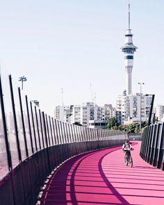 Cities around the world would look so much prettier if they would all paint their cycleways pink  . . . #lightpathAKL #pinkbridge #visitauckland #urbanlisted #aucklandnz #urbanlistakl #aucklandcity #newzealandfinds #nzmustdo #newzealandguide #urbanlife #urbanscape #citiesoftheworld #igersauckland #worldtravelpics #welivetoexplore