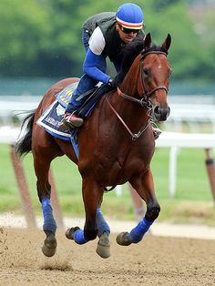 Belmont Stakes 2015Winner