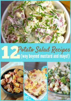 Don't miss this dozen creatively delicious potato salad recipes! Find recipes with kale and apple, ham and cheese, lemon and dill, and even apple butter!