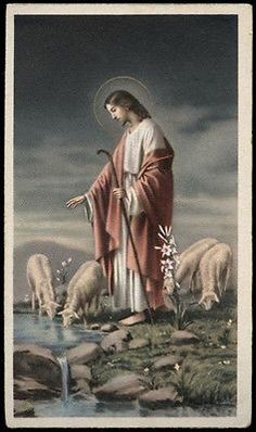"santino-holy card""""ediz. NB serie L n.517 GESU' BUON PASTORE Religious Pictures, Jesus Pictures, Religious Icons, Good Shepard, The Good Shepherd, Mary And Jesus, Jesus Is Lord, Jesus History, Bible Coloring Pages"