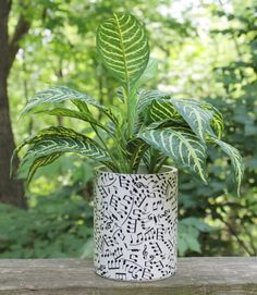 Music Notes Designed Planter or Centerpiece by BFG