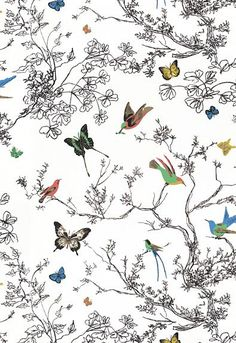 Schumacher Fabric Birds & Butterflies Multi On White 174760 Exuberant-Prints Cotton - Horizontal: 27 and Vertical: 32 54 - My Fabric Connection -