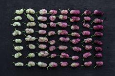 mulberries  #fruit #vegan Raw Food Recipes, Vegan, Fruit, Instagram Posts, The Fruit