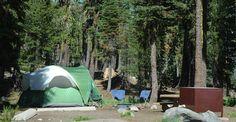 Campsite at Summit Lake Campground, CA