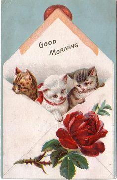 Vintage Postcard Baby Kittens with Rose Greeting Good Morning (Image1)