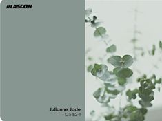 Love this - Julianne Jade. Plascon Colour of the Month - May