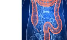 <p>Quase ninguém nos dias de hoje, se lembra de pensar no funcionamento do seu intestino, e de se preocupar se estará tudo bem com esse órgão ou não. O cólon é uma parte vital para a nossa saúde e para o bom funcionamento do nosso organismo. A função essencial do …</p>