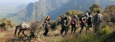 Wandern in Äthiopien: Tiefe Schluchten, grüne Ebenen