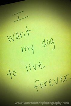 I want my dog to live forever.