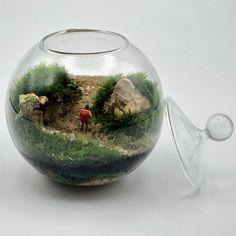Terrario de musgo vivo en bola de cristal de diámetro 10 cm. Todos los productos utilizados son naturales. Caminante , si hay camino. Hay camino por el que andar. Natural, Home Decor, Moss Terrarium, Terrariums, Wayfarer, Hay, Mini Gardens, Crystal Ball, Unique Gifts